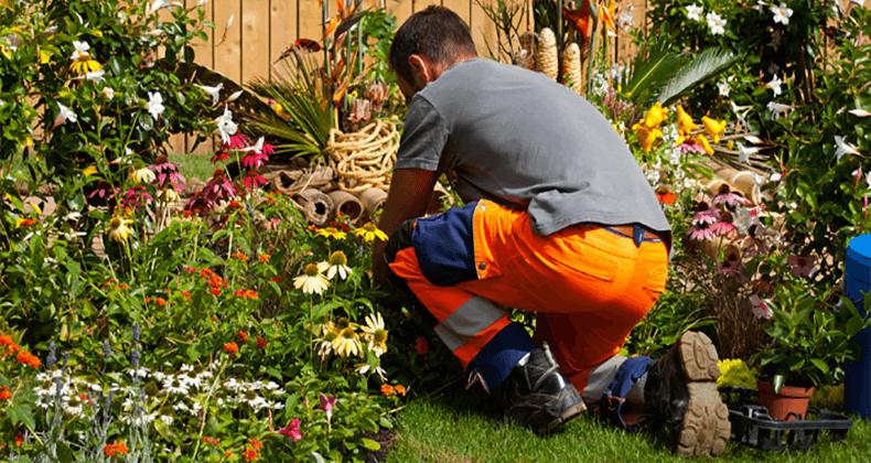 Devis gratuit pour un Jardinier Paysagiste